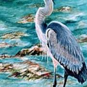 On The Rocks Great Blue Heron Poster by Roxanne Tobaison
