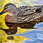 One Leaf Two Ducks Poster by Frozen in Time Fine Art Photography