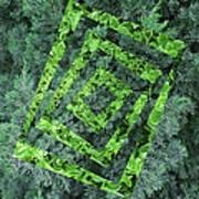 Op Art Garden 2 Poster