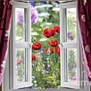 Open Window View Onto Wild Flower Garden Poster