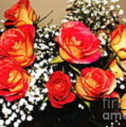 Orange Apricot Roses With Oil Painting Effect Poster