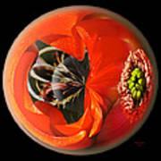 Orange Cactus Flower In A Globe Poster