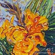 Orange Cannas Poster by Deborah Glasgow