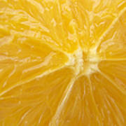 Orange Closeup Poster