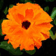 Orange Country Flowers - Impressionist Series Poster