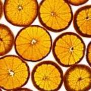 Orange Fresh Poster by Vitaliy Gladkiy