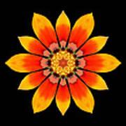 Orange Gazania I Flower Mandala Poster by David J Bookbinder