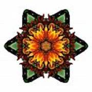Orange Gazania IIi Flower Mandala White Poster