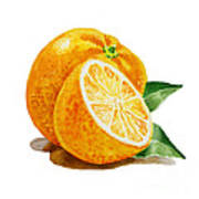 Orange Poster by Irina Sztukowski