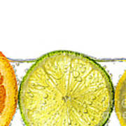 Orange Lemon And Lime Slices In Water Poster by Elena Elisseeva