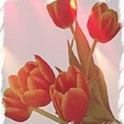 Orange Light Poster by Debra  Miller