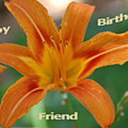 Orange Lily Birthday Poster