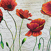 Orange Poppies Original Abstract Flower Painting By Megan Duncanson Poster