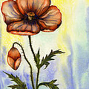 Orange Poppy Poster by Diane Ferron