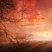 Orange Sunrise On Field Poster by Dorothy Walker