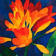 Orange Tropical Flowers Poster