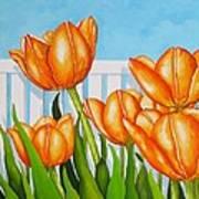 Orange Tulips In My Garden Poster