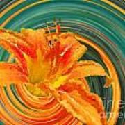 Orange Twist Daylily Photoart Poster