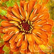 Orange Zinnia Poster