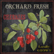 Orchard Fresh Cherries-jp2639 Poster