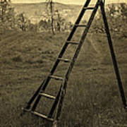Orchard Ladder Poster by Edward Fielding