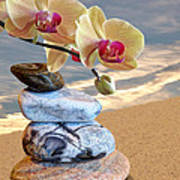 Orchids And Pebbles On Sand Poster