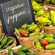 Organic Peppers At Farmers Market Poster