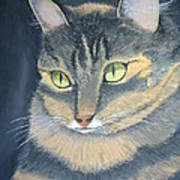 Original Cat Painting Poster