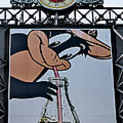 Orioles Mascot Drinks Coca Cola Poster