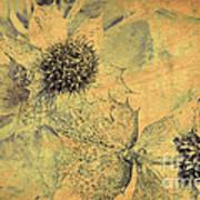 Ornamental Thistle Flower Poster
