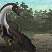 Ornithomimus Mother Dinosaur Poster by Vitor Silva