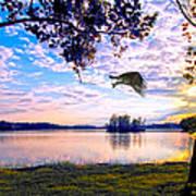 Osprey Leaving Perch Sundown Lake Poster