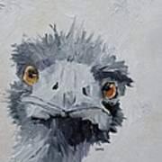 Ostrich Poster
