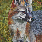 Out Foxed Poster