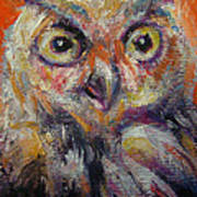 Owl Aceo Poster