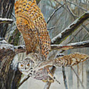 Owl Taking Off Poster