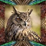 Owl With Collage Border Poster