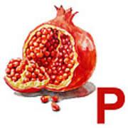 P Art Alphabet For Kids Room Poster