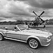 P51 Meets Eleanor In Black And White Poster