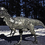 Pachycephalosaurus Poster