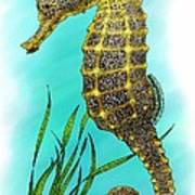 Pacific Seahorse Poster