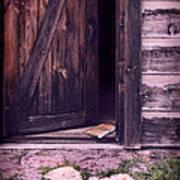 Package By Open Front Door Poster