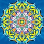 Painted Lotus Xv Poster