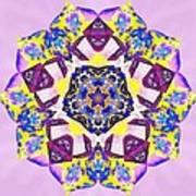 Painted Lotus Xvi Poster