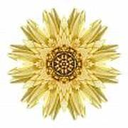 Pale Yellow Gerbera Daisy I Flower Mandala White Poster