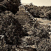 Palenque From The Jungle Panorama Sepia Poster