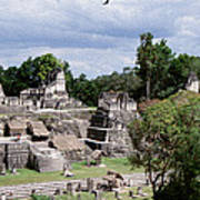 Palenque Ruins Poster