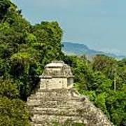 Palenque Temple Poster