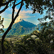 Pali Lookout For Puu Alii Poster