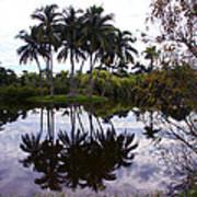 Palm Island I Poster